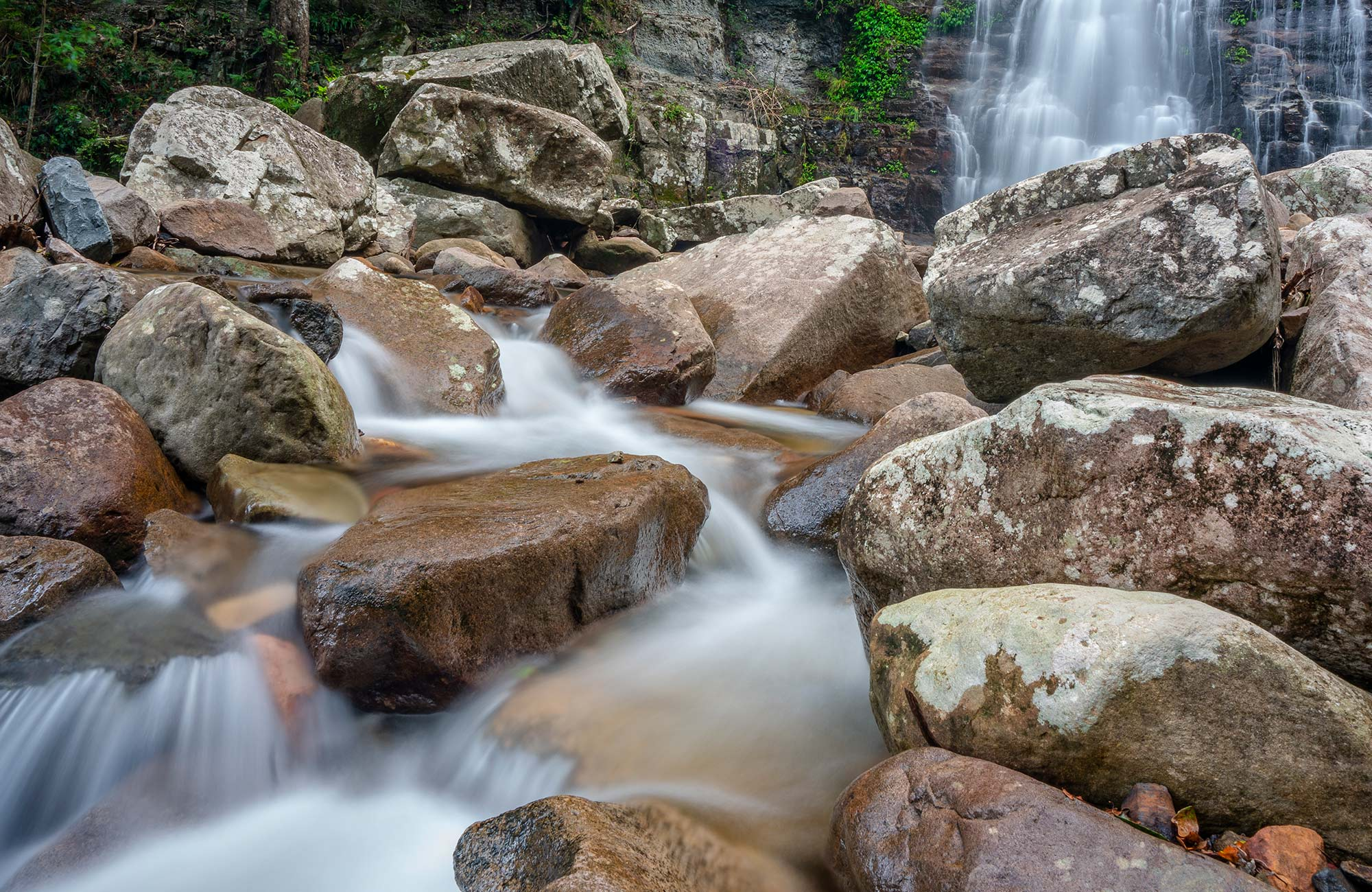 Water rushes over rocks below Minnamurra Falls in Budderoo National Park. Photo credit: John Spencer © DPIE
