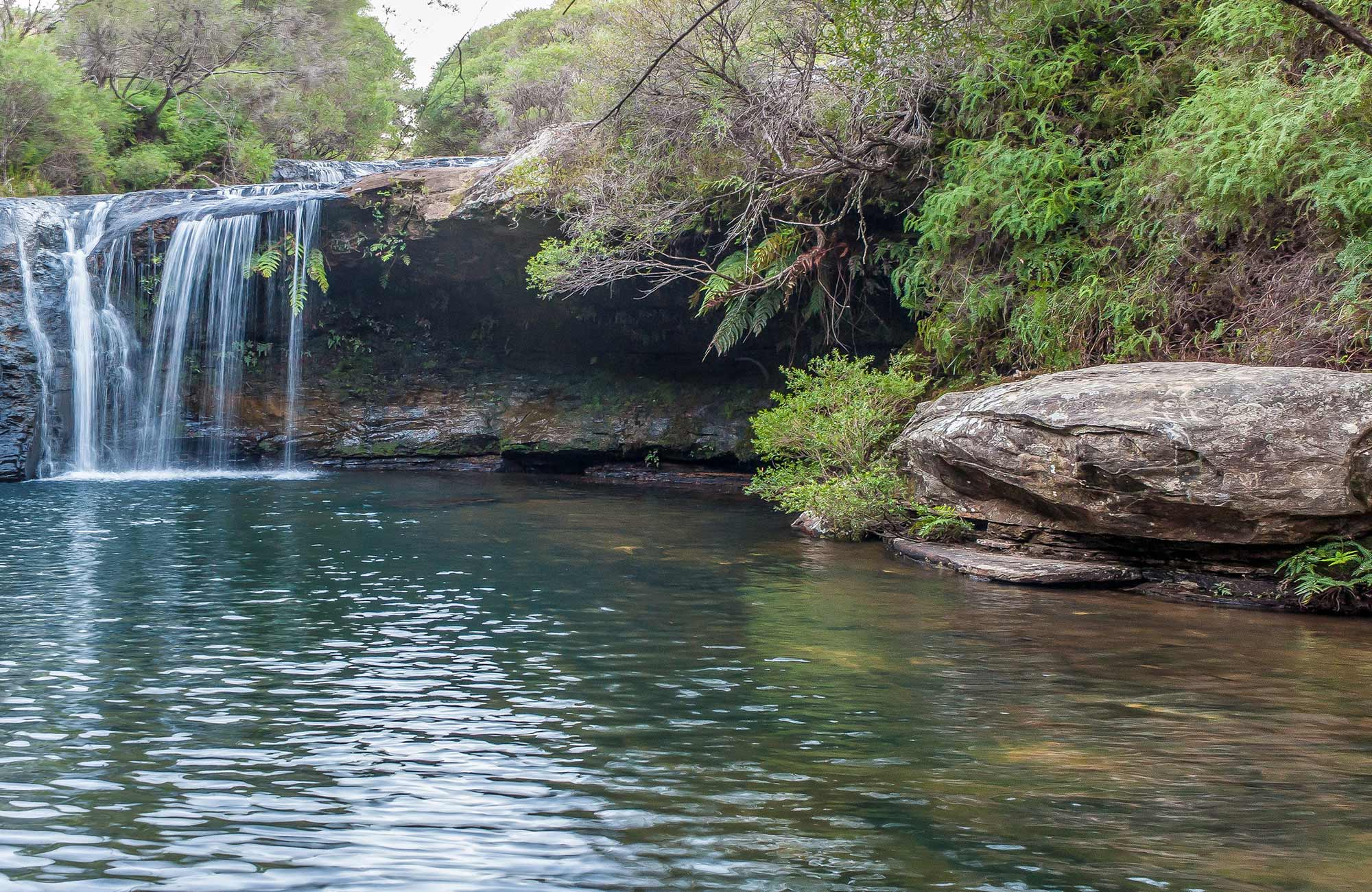 Nellies Glen waterfall in Budderoo National Park. Photo credit: Michael Van Ewijk © DPIE