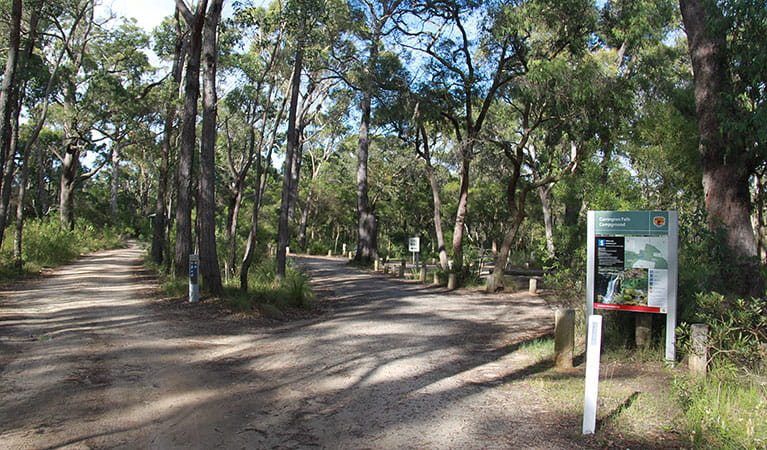 Entrance to Carrington Falls campground, Budderoo National Park. Photo: Chris Keyzer/OEH
