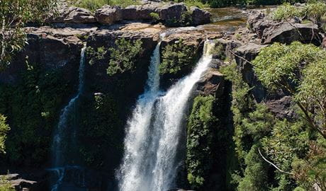 Water cascades over a ledge and down a cliff face at Carrington Falls. Photo credit: Michael Van Ewijk © DPIE