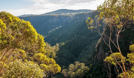View of Izzards lookout in Budderoo National Park. Photo credit: Michael Van Ewijk © DPIE