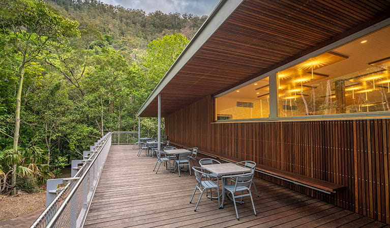 Minnamurra Rainforest Centre, Budderoo National Park. Photo credit: Andrew Richards © Andrew Richards