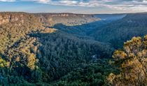 Valley views from Missingham lookout track in Budderoo National Park. Photo: Michael Van Ewijk © DPIE