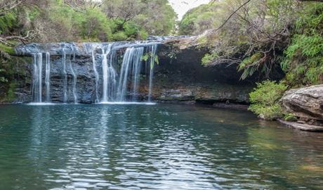 Nellies Glen waterfall, Budderoo National Park. Photo credit: Michael Van Ewijk © DPIE