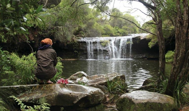 A visitor perches on a rock beside Nellies Glen in Budderoo National Park. Photo credit: Andrew Richards © Andrew Richards