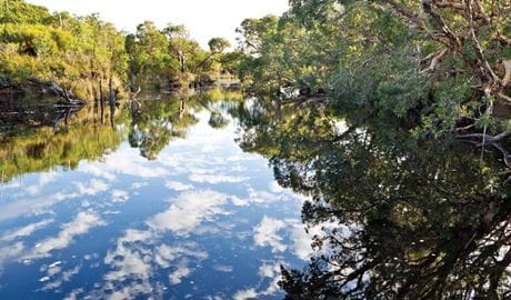 Jerusalem creek, Bundjalung National Park. Photo: Rob Cleary Copyright:Rob Cleary