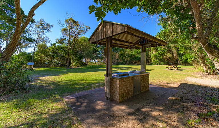 Shark Beach picnic area showing sheltered barbecue, picnic table and grassy area, surrounded by coastal rainforest.  Photo: Jessica Robertson/OEH.