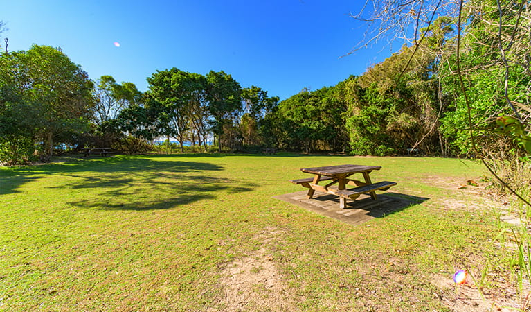 Picnic area showing flat site covered with grass and surrounded by coastal forest. Photo: Jessica Robertson/OEH.