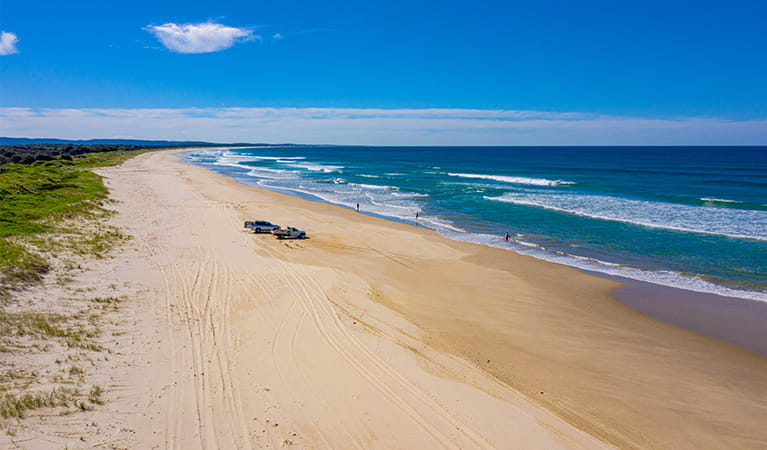 Aerial view of Shark Bay beach coastline with  4WD vehicles in the distance. Photo: Jessica Robertson/OEH.