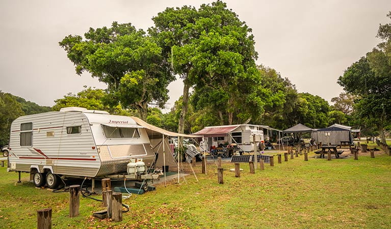 Two caravans set up for a holiday at Woody Head campground, Bundjalung National Park. Photo: John Spencer/OEH
