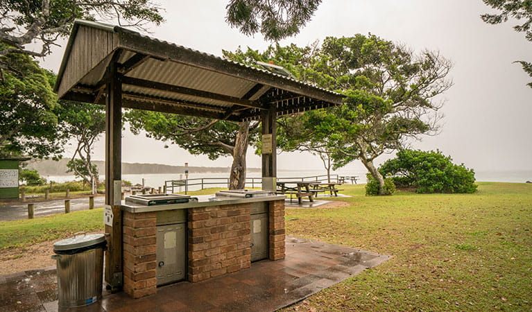 Covered gas-fired barbecue facilities at Woody Head campground, Bundjalung National Park. Photo: John Spencer/OEH