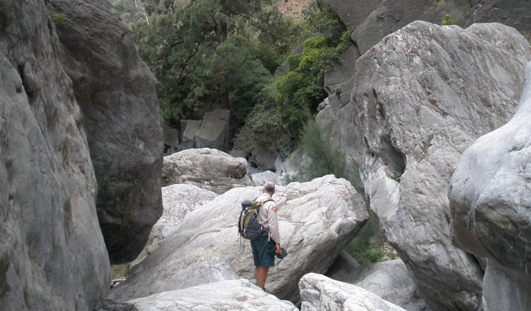Red Track, Bungonia National Park. Photo: Audrey Kutzner/NSW Government
