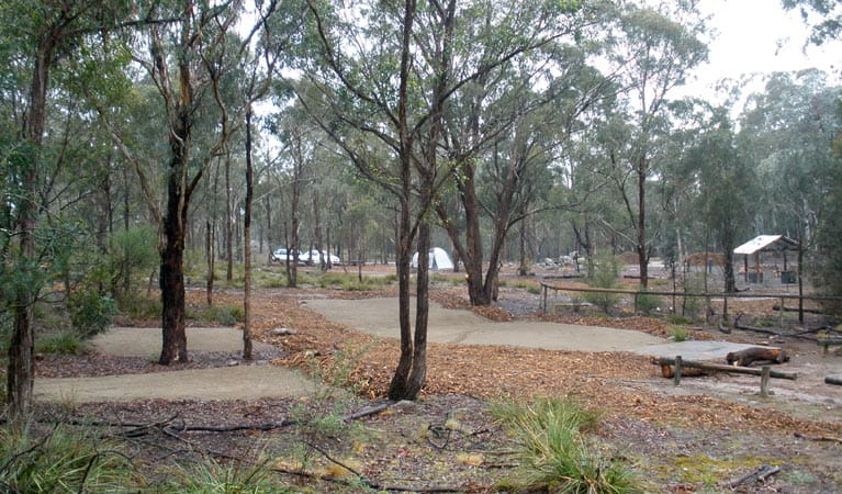 Bungonia Campground, Bungonia National Park. Photo: Audrey Kutzner/NSW Government