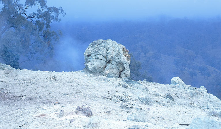 Mist on Burning Mountain Nature Reserve. Photo: OEH