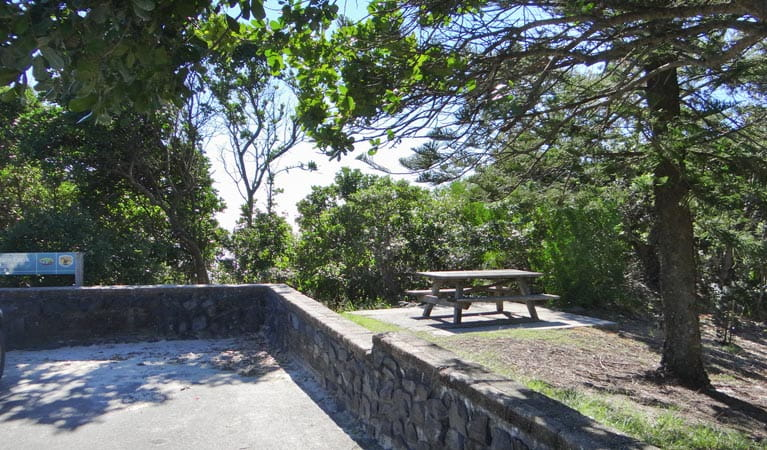 Captain Cook lookout and picnic area, Cape Byron State Conservation Area. Photo: N Oliver