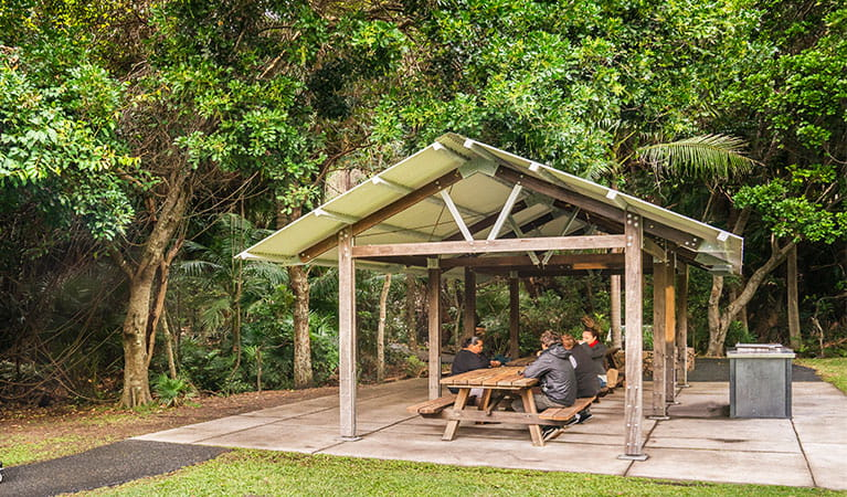 Group of people seated in picnic area in Palm Valley, Cape Byron State Conservation Area. Photo: J Spencer/OEH