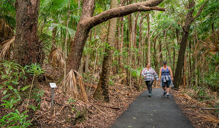 Two women on Palm Valley Currenbah walking track, Cape Byron State Conservation Area. Photo: J Spencer/OEH