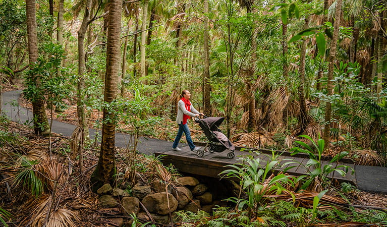 Woman with stroller on Palm Valley Currenbah walking track, Cape Byron State Conservation Area. Photo: John Spencer © DPIE