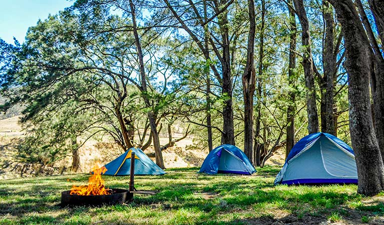 Capertee campground, Capertee National Park. Photo: Michelle Barton