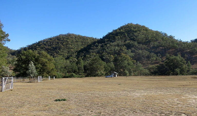 Capertee campground with tree-covered hills in the background in Capertee National Park. Photo: Jessica Barnie © DPIE