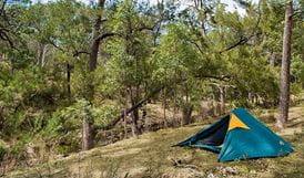 Policemans Point campground, Capertee National Park. Photo: Michelle Barton
