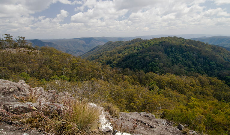 View of mountains and valleys from Hoppy's lookout in Oxley Wild Rivers National Park.   Photo: John Spencer/OEH