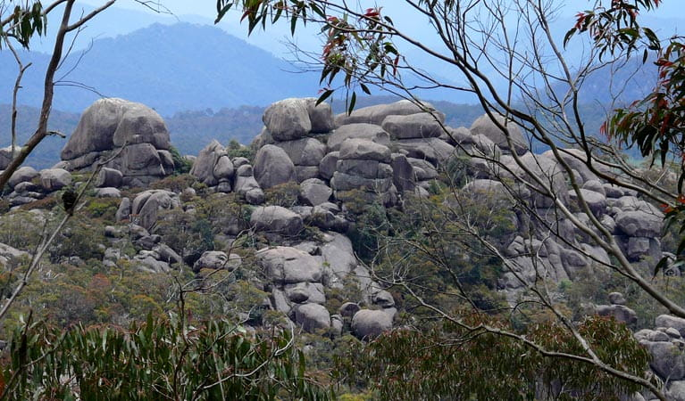 A natural rock pile in Cathedral Rock National Park. Photo A Ingarfield