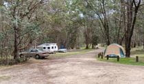A tent set up near a car and campervan in Native Dog Campground, Cathedral Rock National Park. Photo: B Webster