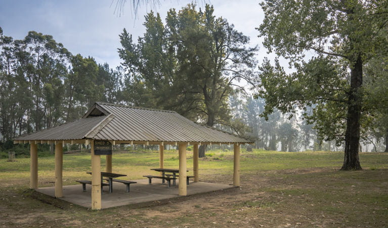 A picnic shed with two wooden picnic tables underneath, at Cattai Farm picnic area in Cattai national Park, on the Hawkesbury River. Photo: John Spencer/OEH