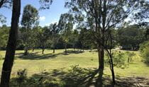 The green, tree-lined space of Mitchell Park picnic area, Cattai National Park. Photo: Cameron Wade/the photographer