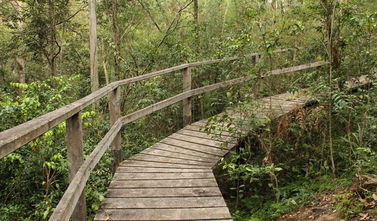 Boardwalk along Mitchell Park walking track. Photo: John Yurasek/OEH