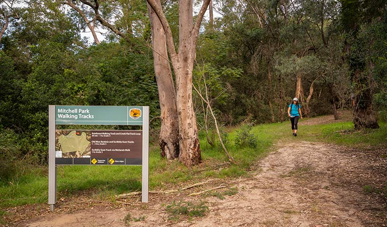 A woman walks along a forest path toward a sign for Mitchell Park walking tracks.  Photo: John Spencer/OEH.
