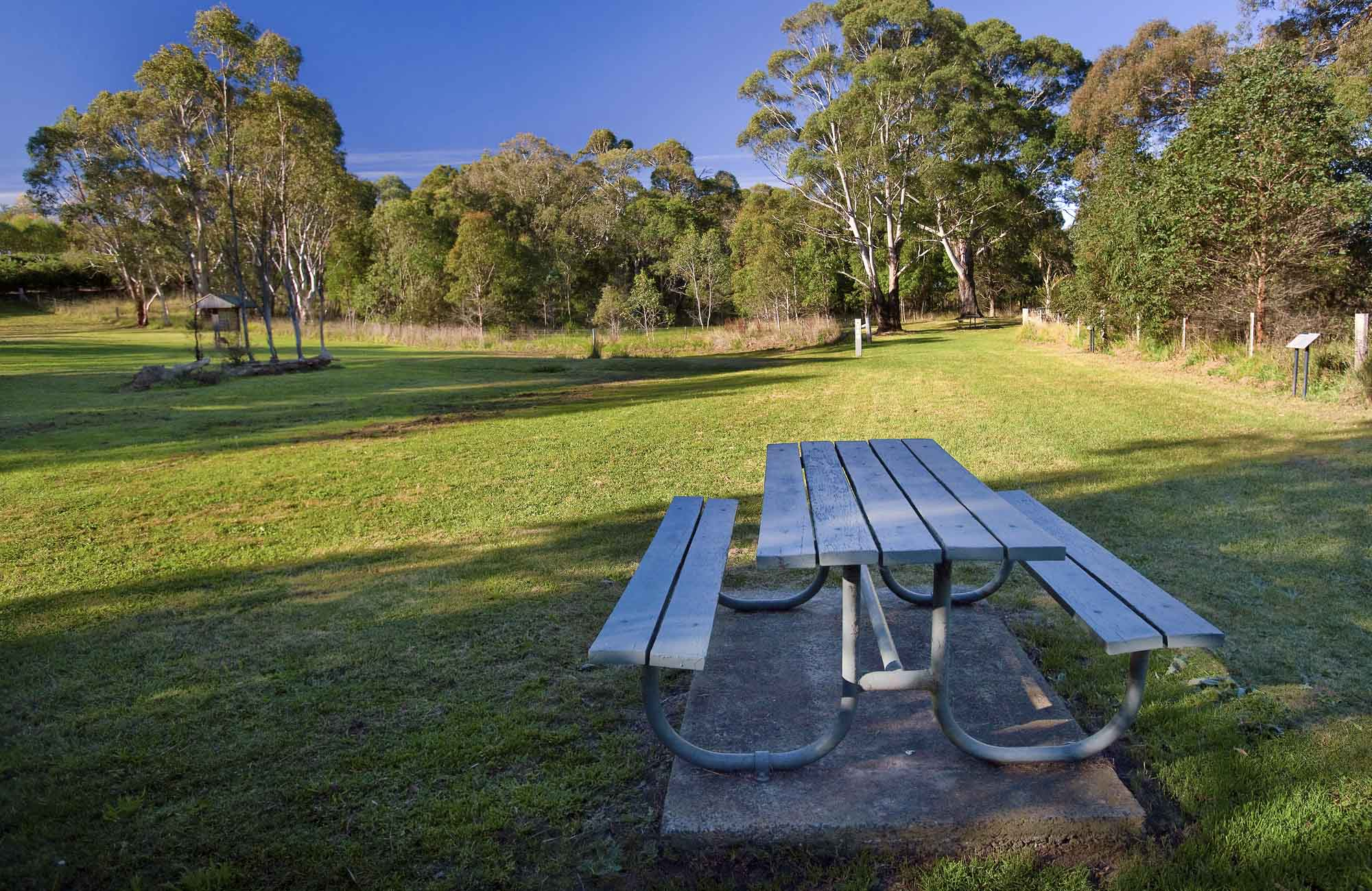 Cecil Hoskins picnic area, Cecil Hoskins Nature Reserve. Photo: Nick Cubbin