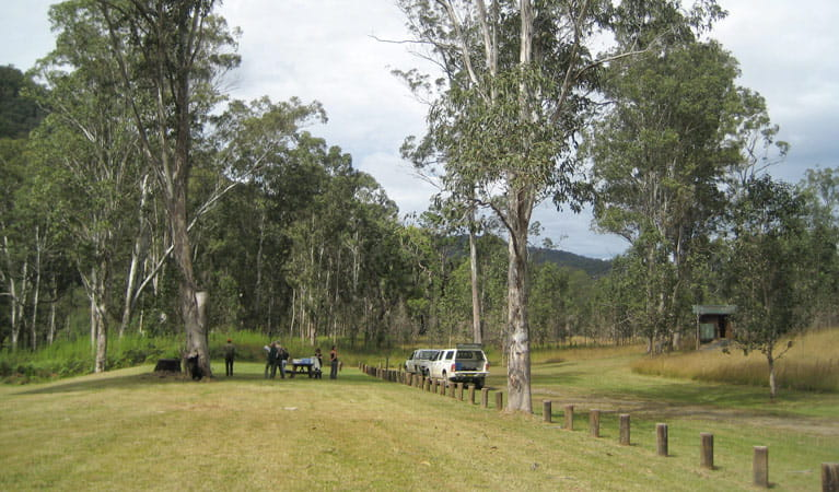 Campers arrive at Doon Goonge campground, Chaelundi National Park. Photo: A Harber/NSW Government