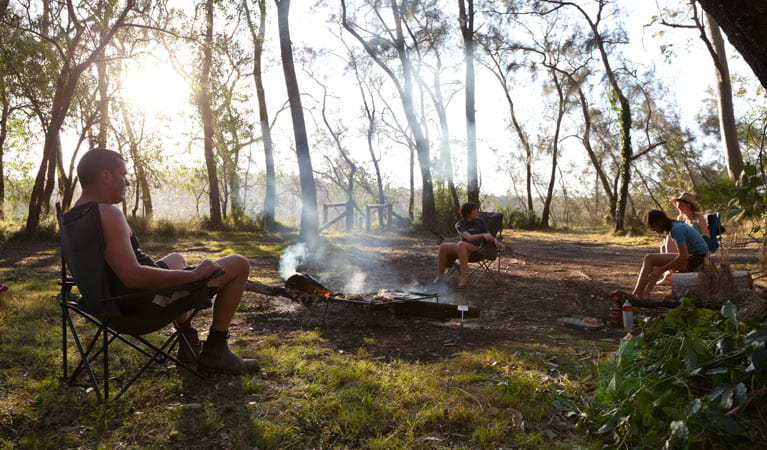 Beach campground barbecue, Clyde River National Park. Photo: Lucas Boyd.