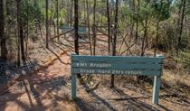 Mount Brogden walking track, Cocoparra National Park. Photo: John Spencer