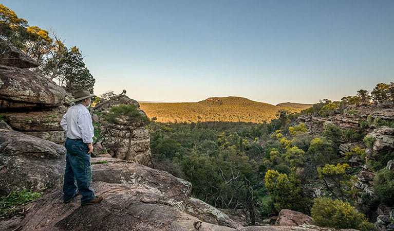 A man looks out across Cocoparra National Park from Spring Hill picnic area. Photo: John Spencer/DPIE