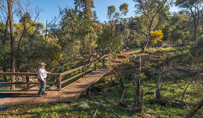 A man on Falcon Falls walking track in Cocoparra National Park. Photo: John Spencer/DPIE