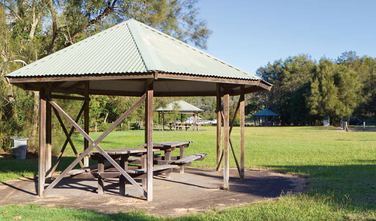 Diggers Beach picnic area. Photo: Rob Cleary