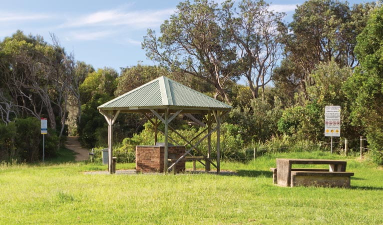 Picnic area shelter, Coffs Coast Regional Park. Photo: Rob Cleary