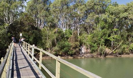 Walkway over Woolgoolga Lake. Photo: Rob Cleary