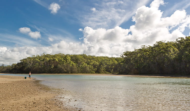 Woolgoolga Lake, Coffs Coast Regional Park. Photo: Rob Cleary