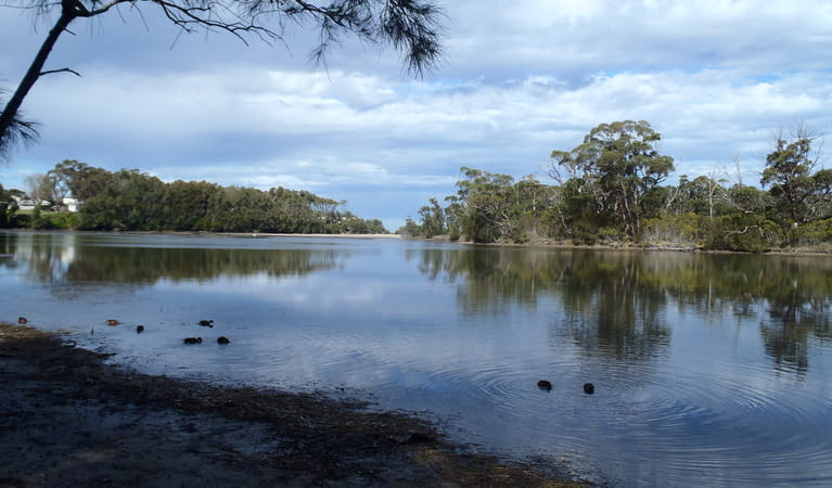 Lagoon, Conjola National Park. Photo: Libby Shields