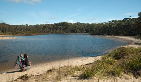 Lagoon shore, Conjola National Park. Photo: Michael Jarman