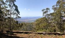 The view of Liverpool and Breeza plains from Breeza lookout in Coolah Tops National Park. Photo: Kristy Sawtell © DPIE