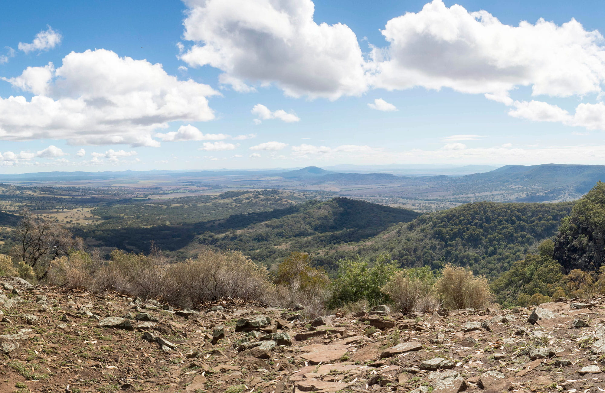 Panoramic view past grassy escarpment edge to a patchwork of wide open, rolling hills and plains. Photo: Leah Pippos © DPIE