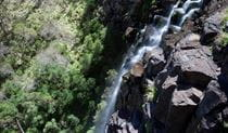 At Norfolk Falls, water cascades over a steep rocky cliff set in bushland.  Photo: Nick Cubbin/DPIE