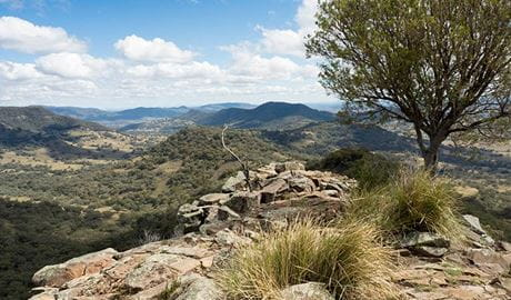 Vista from rock ledge past a small tree to the vast Warrumbungles landscape under a partially cloudy sky. Photo: Leah Pippos/DPIE