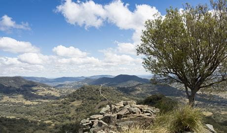Views across the Warrumbungle Range from Pinnacle lookout, Coolah Tops National Park, near Coolah. Photo: Leah Pippos © DPIE