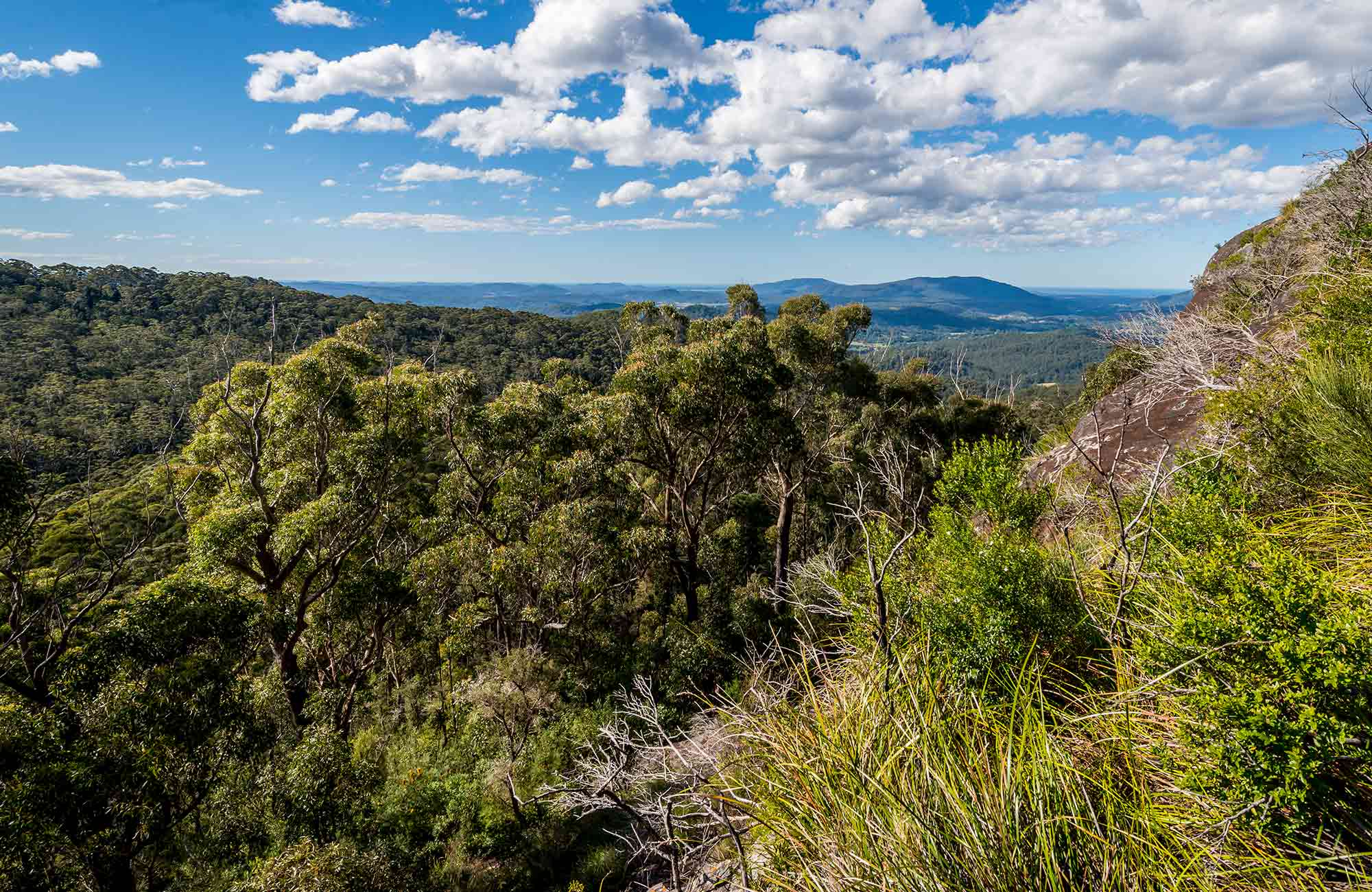 Big Nellie lookout and picnic area, Coorabakh National Park. Photo: John Spencer
